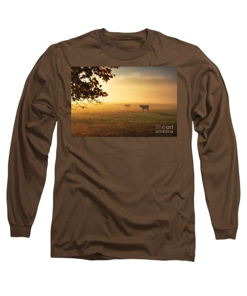 Cows In A Foggy Field Long Sleeve T-Shirt