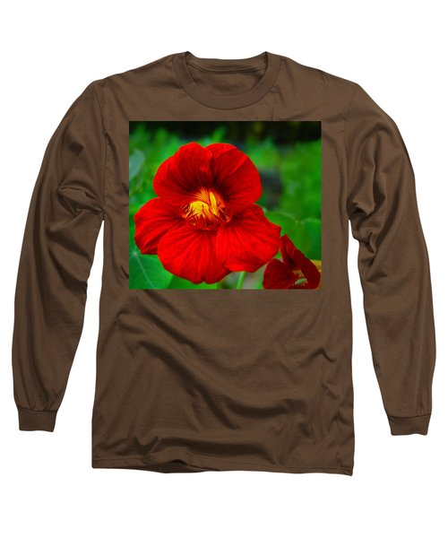 Day Lily Long Sleeve T-Shirt by Bill Barber