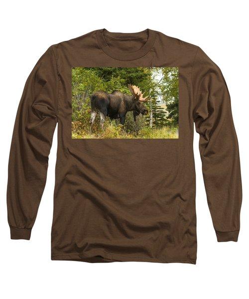 Fall Bull Moose Long Sleeve T-Shirt by Doug Lloyd