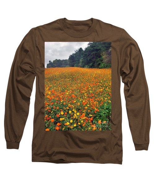 Long Sleeve T-Shirt featuring the photograph Fall Flowers by Janice Spivey