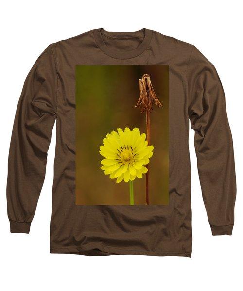 False Dandelion Flower With Wilted Fruit Long Sleeve T-Shirt
