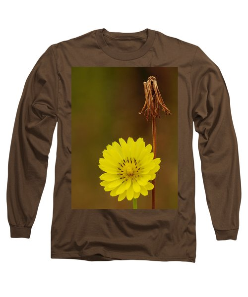 False Dandelion Flower With Wilted Fruit Long Sleeve T-Shirt