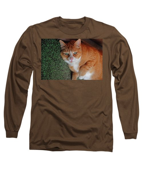 Fat Cats Of Ballard 6 Long Sleeve T-Shirt