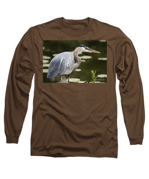 Long Sleeve T-Shirt featuring the photograph Great Blue Heron  by Jeannette Hunt