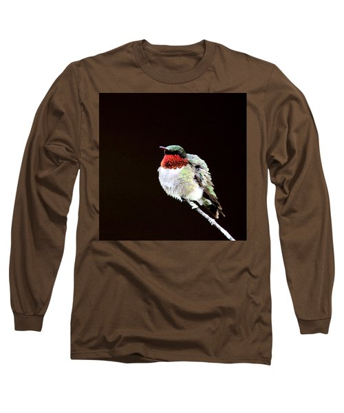 Hummingbird - Ruffled Feathers Long Sleeve T-Shirt by Travis Truelove