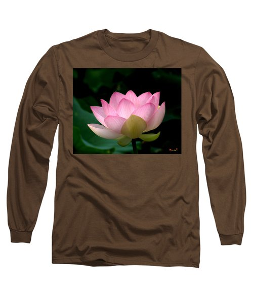 Lotus Beauty--blushing Dl003 Long Sleeve T-Shirt