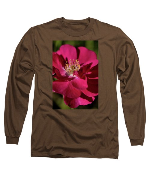 Long Sleeve T-Shirt featuring the photograph Pink Of Rose by Joy Watson