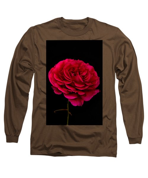 Long Sleeve T-Shirt featuring the photograph Pink Rose by Steve Purnell