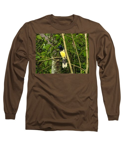 Long Sleeve T-Shirt featuring the photograph Plush-crested Jay by David Gleeson