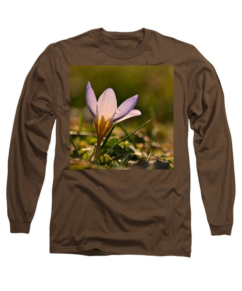Purple Crocus Long Sleeve T-Shirt