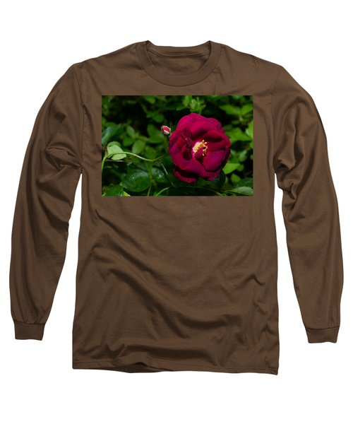 Red Rose In The Wild Long Sleeve T-Shirt