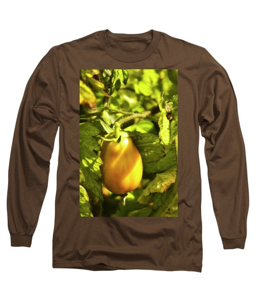 Long Sleeve T-Shirt featuring the photograph Ripening Roma by Albert Seger
