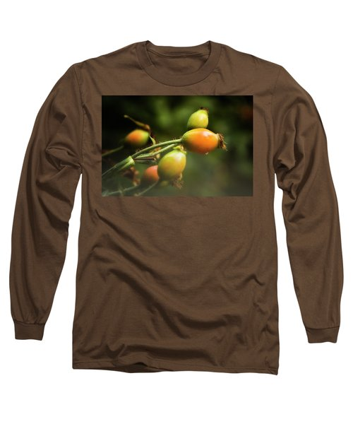 Long Sleeve T-Shirt featuring the photograph Rose Hips by Albert Seger