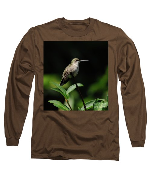 Ruby-throated Hummingbird Female Long Sleeve T-Shirt