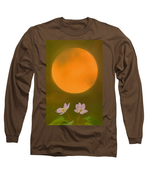 Rue Anemone And The Rising Sun Long Sleeve T-Shirt