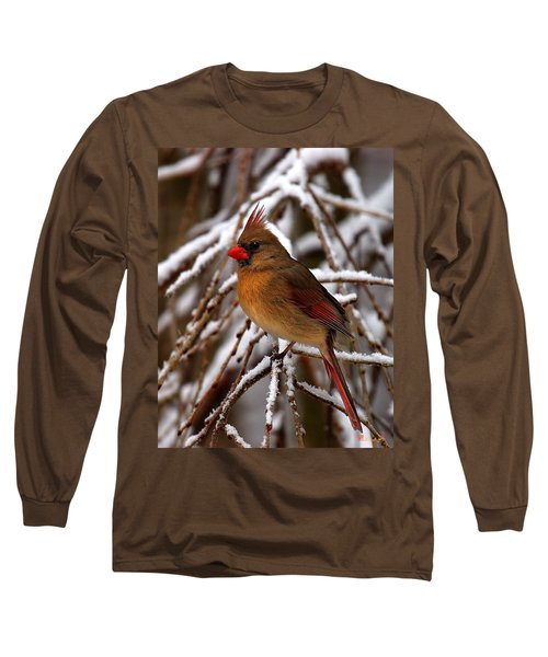 Snowbirds--cardinal Dsb025 Long Sleeve T-Shirt