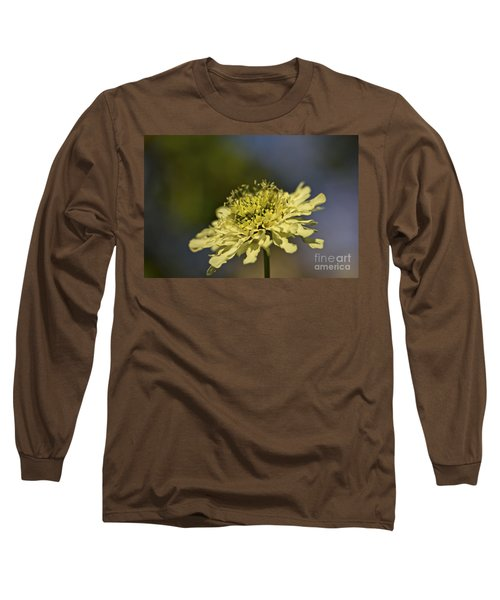 Long Sleeve T-Shirt featuring the photograph Soft Yellow. by Clare Bambers