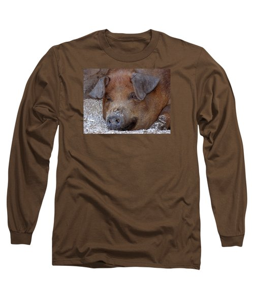 This Little Piggy Took A Nap Long Sleeve T-Shirt