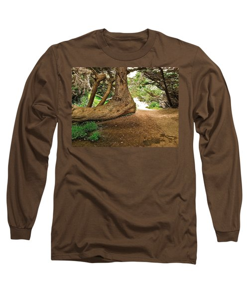Tree And Trail Long Sleeve T-Shirt by Bill Owen