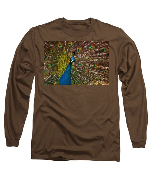 Turquoise And Gold Wonder Long Sleeve T-Shirt