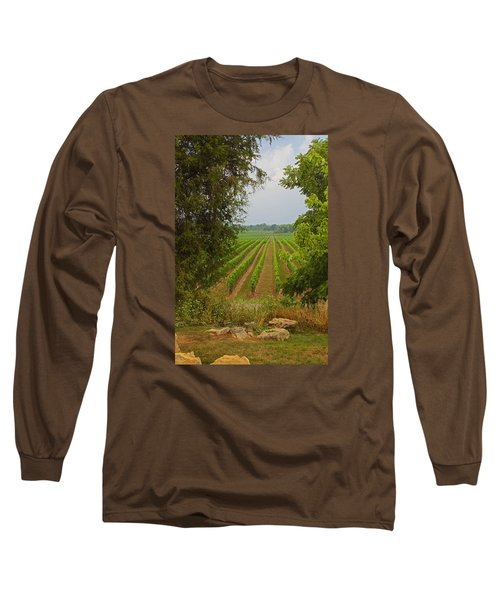 Vineyard On The Bench Long Sleeve T-Shirt by John Stuart Webbstock