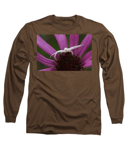 Whitebanded Crab Spider On Tennessee Coneflower Long Sleeve T-Shirt by Daniel Reed