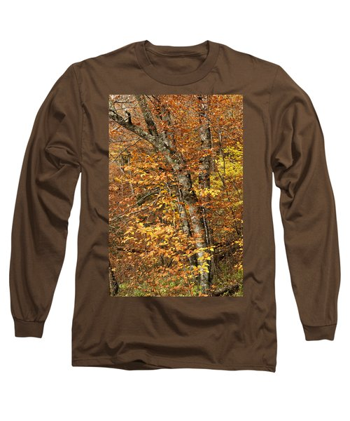 Autumn Colors Long Sleeve T-Shirt by Andrew Soundarajan
