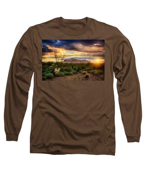Beauty In The Desert Long Sleeve T-Shirt