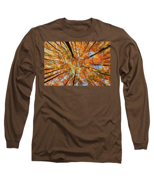Beneath The Canopy Long Sleeve T-Shirt by Edward Kreis