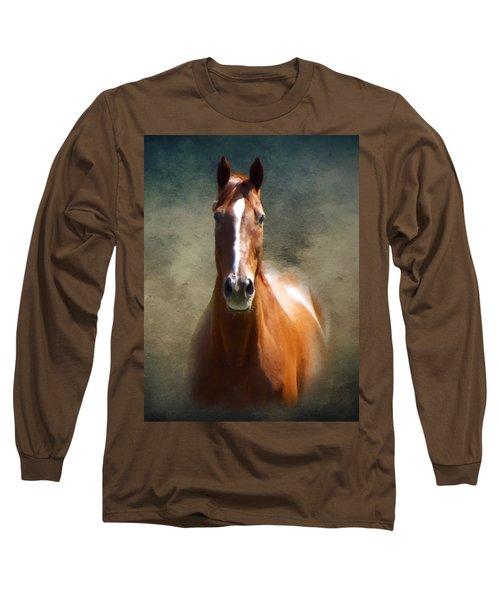 Misty In The Moonlight P D P Long Sleeve T-Shirt