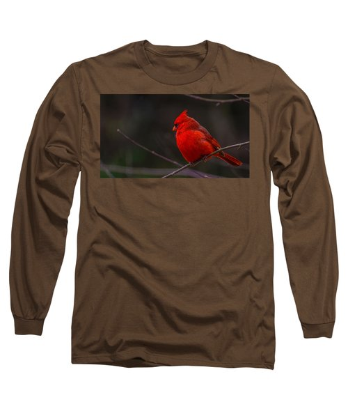 Quality Quiet Time  Long Sleeve T-Shirt by John Harding