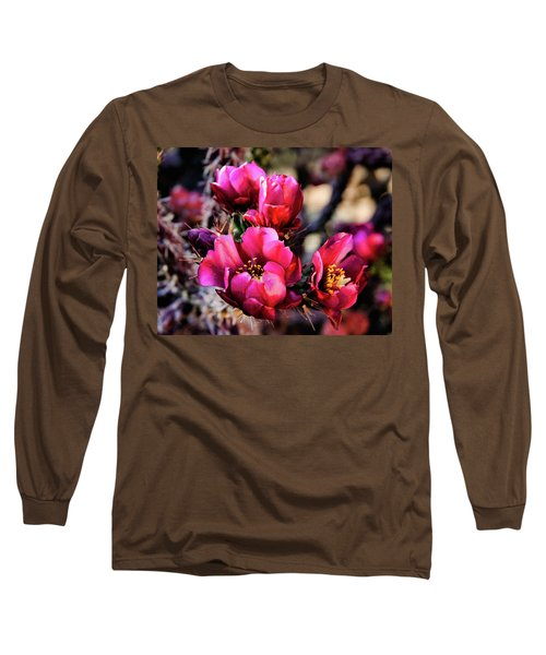 Sed Misc 07-002 Long Sleeve T-Shirt by Scott McAllister