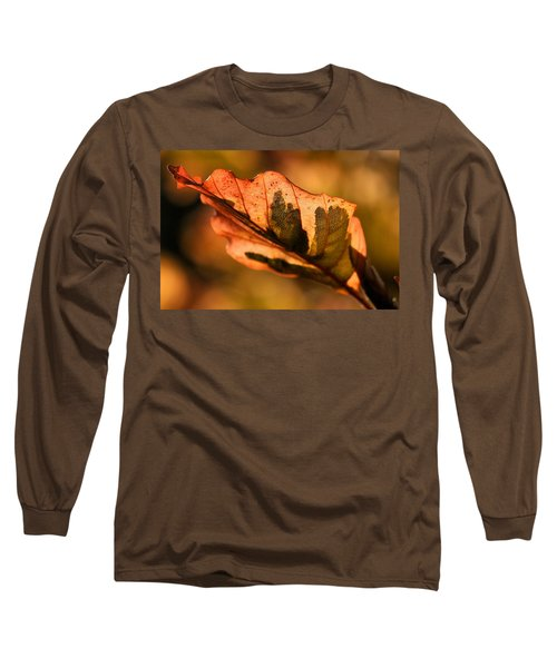 Tri-color Beech In Autumn Long Sleeve T-Shirt