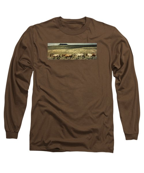Walking The Line At Pilot Butte Long Sleeve T-Shirt