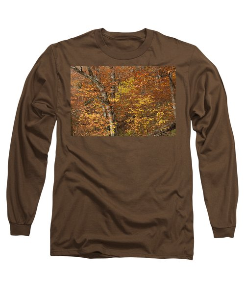 Autumn In The Woods Long Sleeve T-Shirt by Andrew Soundarajan
