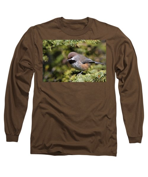 Boreal Chickadee Long Sleeve T-Shirt by Doug Lloyd