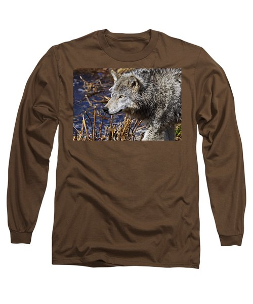 Long Sleeve T-Shirt featuring the photograph Timber Wolf by Michael Cummings