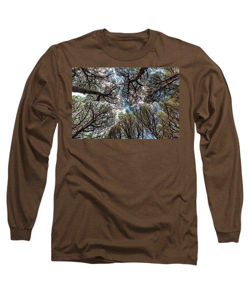 Pinewood Forest, Cecina, Tuscany, Italy Long Sleeve T-Shirt by Elenarts - Elena Duvernay photo