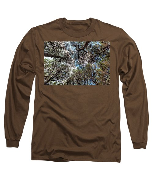 Pinewood Forest, Cecina, Tuscany, Italy Long Sleeve T-Shirt