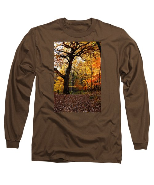 A Walk In The Woods 2 Long Sleeve T-Shirt by Steven Clipperton