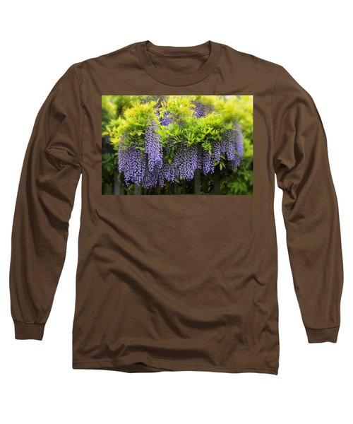A Wealth Of Wisteria Long Sleeve T-Shirt