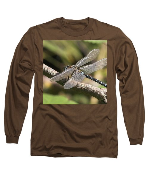 Aeshna Juncea - Common Hawker Taken At Long Sleeve T-Shirt