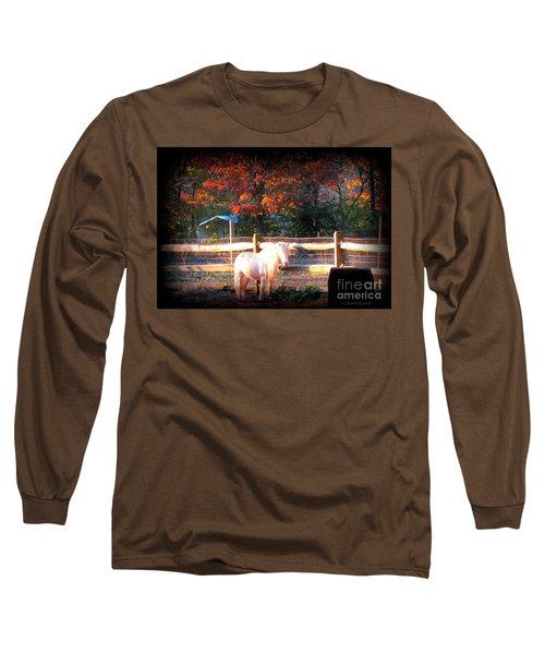 Ajax Long Sleeve T-Shirt