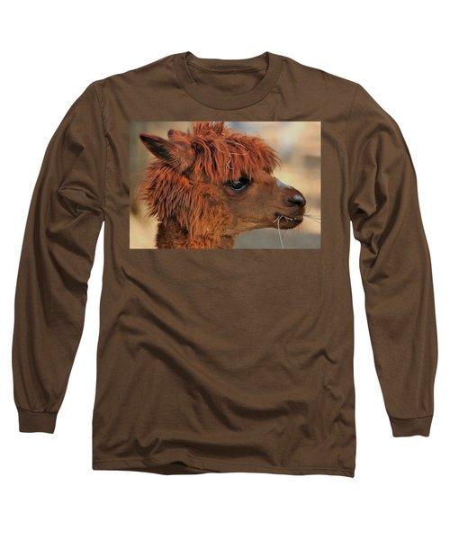 Alpaca Portrait Long Sleeve T-Shirt by Sheila Brown
