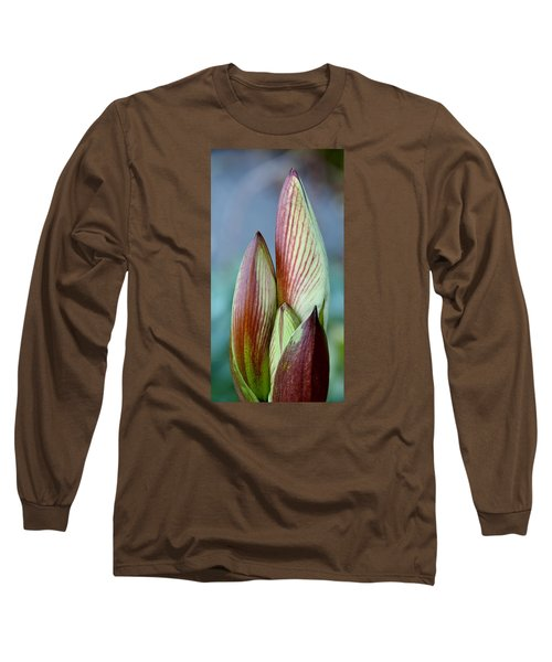 Long Sleeve T-Shirt featuring the photograph Amaryllis Buds by Werner Lehmann