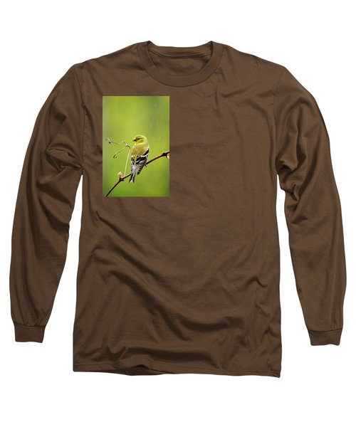 American Goldfinch In The Rain Long Sleeve T-Shirt