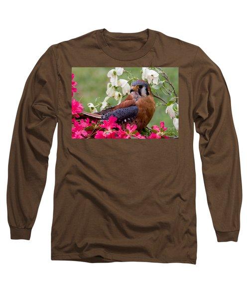 American Kestrel In The Springtime Long Sleeve T-Shirt