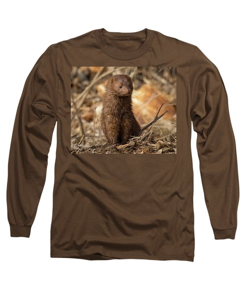 American Mink At Johnson Park Long Sleeve T-Shirt