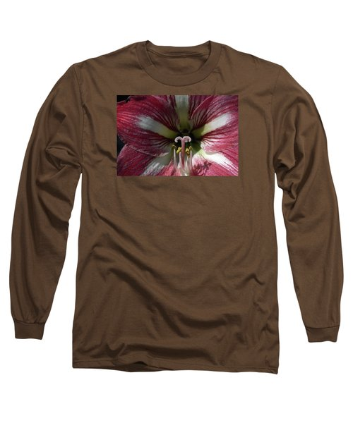 Long Sleeve T-Shirt featuring the photograph Amaryllis Flower Close-up by Sally Weigand