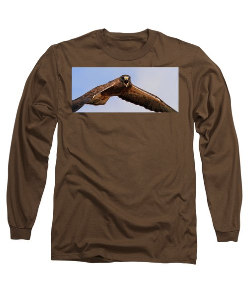 Angry Swainson's Hawk Long Sleeve T-Shirt